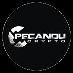 Pecandu Crypto